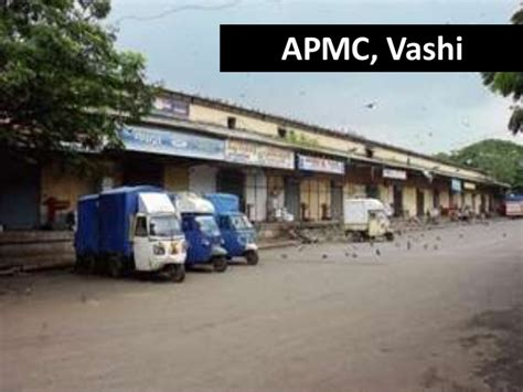 vashi market apmc agricultural produce market committee market report