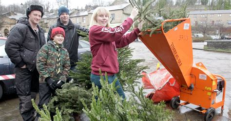 how can i recycle my christmas tree huddersfield examiner