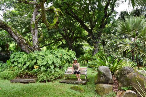 Seychelles Botanical Garden Our Trip To The Beautiful Seychelles Islands