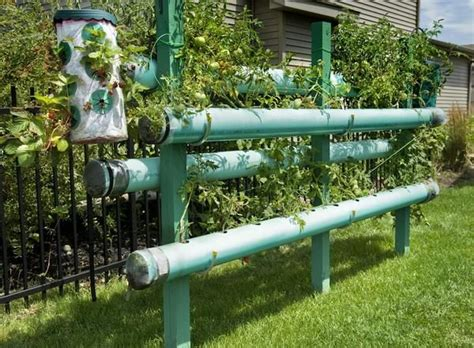 vertical pvc pipe vegetable garden vertical gardening using pvc pipes dream garden pinterest