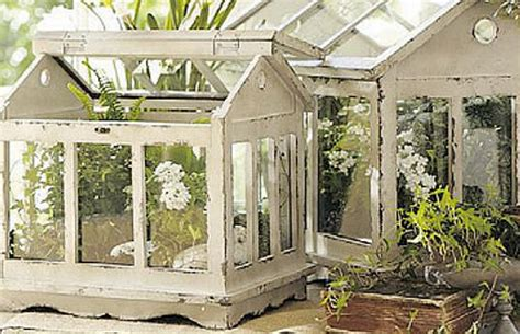 terrarium garden   tiny transparent perfect world
