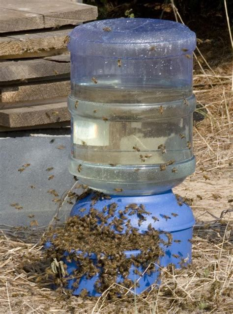 great idea garden pinterest bees water and water