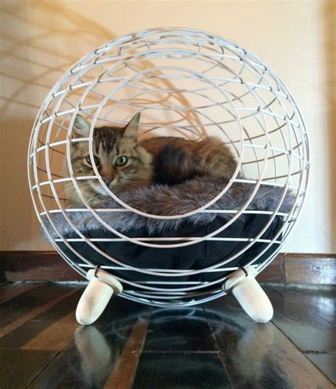 modern cat bed contemporary cat bed by lord paw contemporist