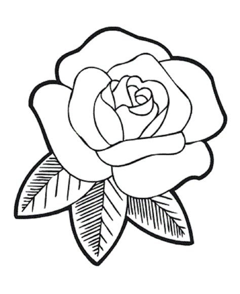 rose flower coloring pages flower coloring page