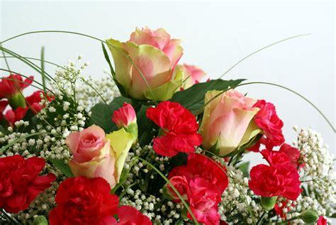 imagenes de rosas y flores imagenes de flores archives imagenes animadas gratis