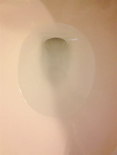 water ring toilet bowl get rid of the hard water ring around your toilet bowl