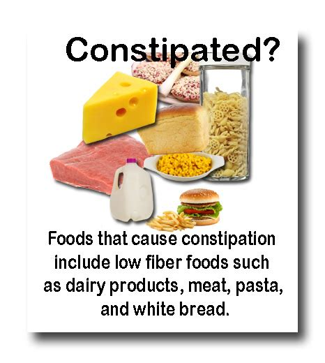 Foods To Stop Stools the most common constipation causing foods you should