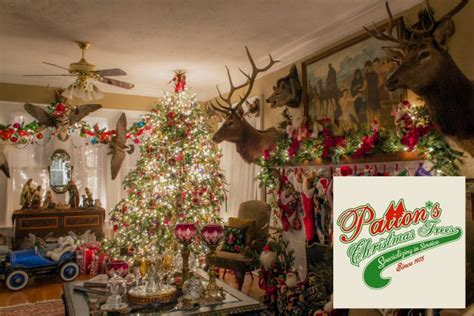 light up christmas packages jeff patton christmas trees light up the holidays package