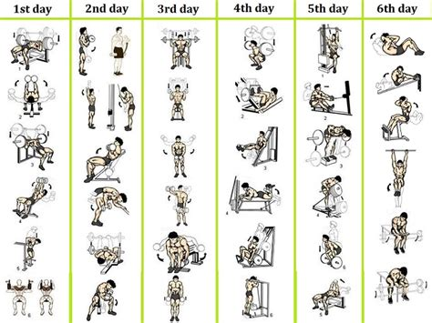 best workout routine for best 6 day workout routines for all bodybuilding