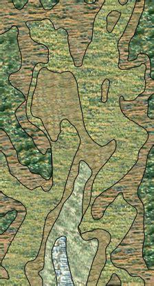 mosaic pattern of succession alpandino dynamic mountain climate snow