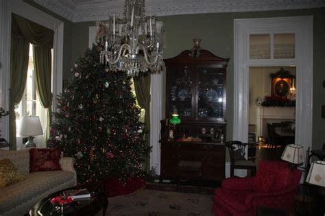 charleston tea room in charleston picture of charleston tea tours charleston tripadvisor
