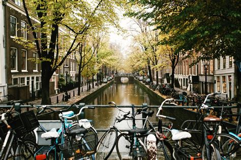 babylon city tours guided amsterdam tours amsterdam