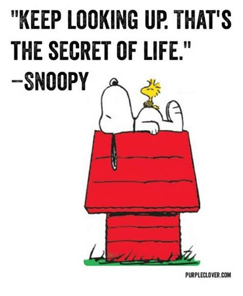 Looking Up Meme - keep looking up that s the secret of life snoopy a