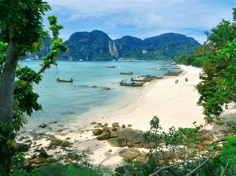 best places to stay in phi phi what to do and where to stay on phi phi island