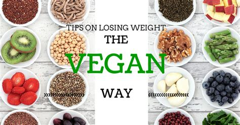 weight loss vegetarian diet how to use a vegan diet to lose weight hourglass