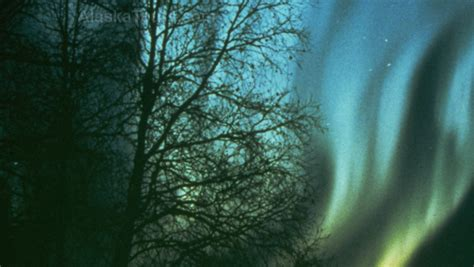 northern lights packages alaska alaska northern lights vacation package fairbanks alaska