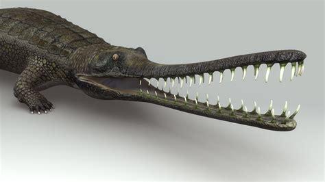Original One Effect Crocodile Bib obj gharial gavial crocodile
