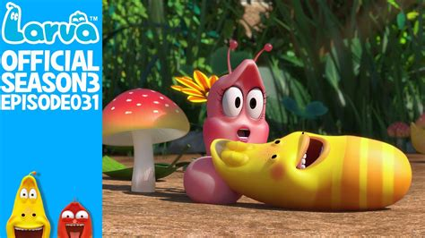 download film larva season 3 full episode official pink s secret larva season 3 episode 31 youtube