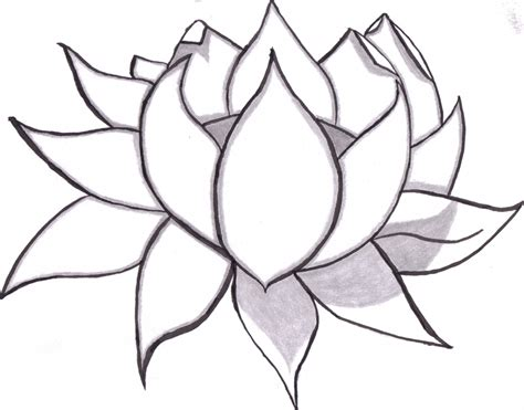 pretty drawings to draw drawings of flowers drawings nocturnal