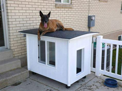 awesome outdoor dog houses home design  interior