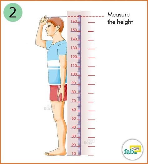 how to measure height how to correctly calculate your mass index bmi fab how