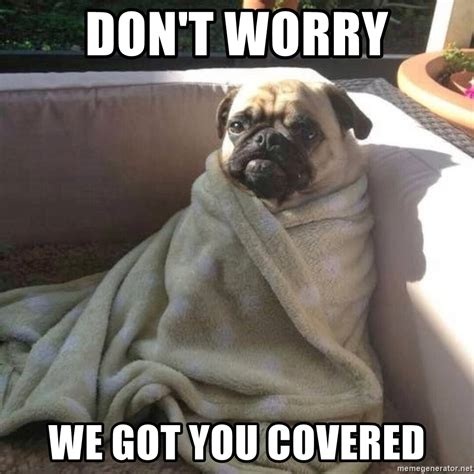 We Got This Meme - don t worry we got you covered blanket pug meme generator