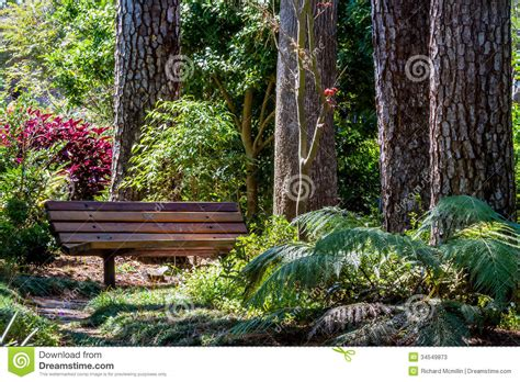 bench in the garden a beautiful secluded park bench in the garden stock image