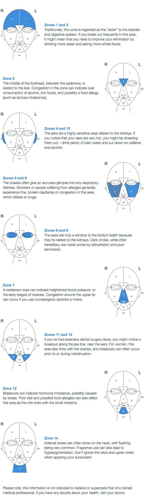 Face Mapping On Pinterest Estheticians Facial Massage | dermalogica face mapping skin analysis beauty tips and