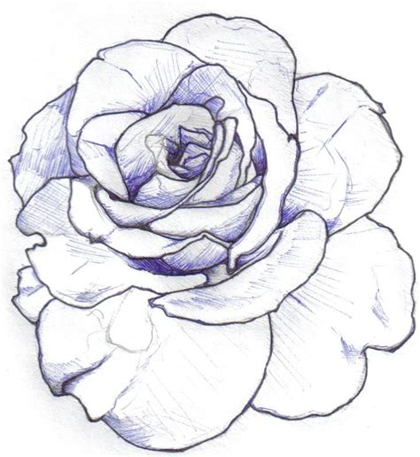 sketch rose tattoo outline minimal shading inspiration
