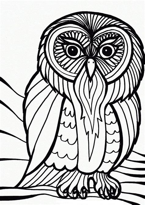 barred owl coloring page flying seagull coloring page seagull2 secretary bird