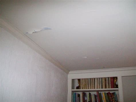 Re Skim Ceiling by Cracked Plaster Ceiling Skim Coated Now Peeling