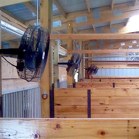 best horse stall fans the best fan for horse stalls