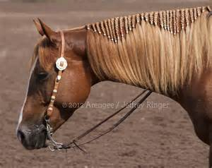 hairstyles for horses braiding ideas pictures included my horse forum