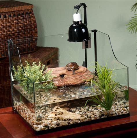 Indoor Pond by Exo Terra Bent Glass Turtle Terrarium