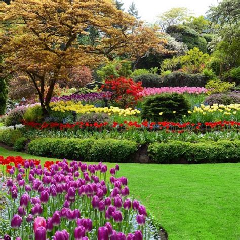beautiful gardens the most beautiful botanical gardens to visit in canada
