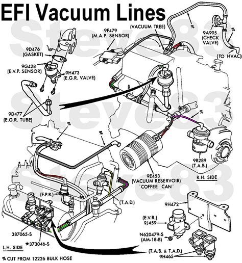 ford   questions    diagram  vacuum hoses    efi  litre cargurus