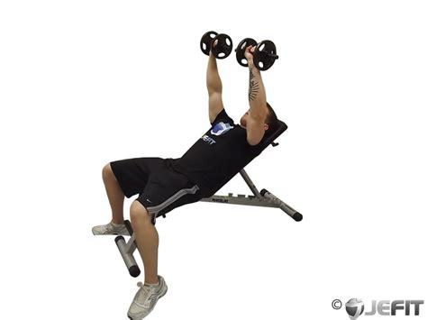 incline bench for shoulders dumbbell double incline shoulder raise exercise database