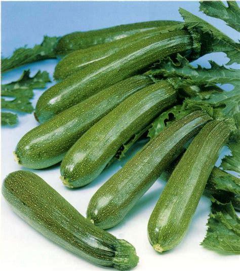 come si possono cucinare le zucchine come cucinare le zucchine ricette della nonna