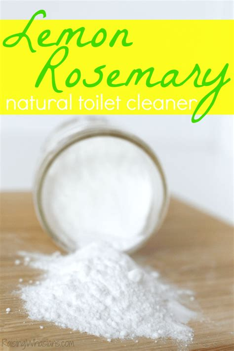 natural cleaning bathroom natural toilet cleaner 6 bathroom toilet cleaning tips