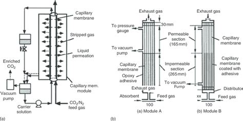 14 schematic diagrams of facilitated transport of gas