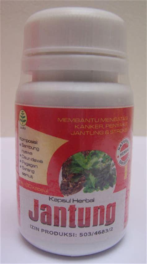 Obat Herbal Jantung obat jantung tradisional herbal alami
