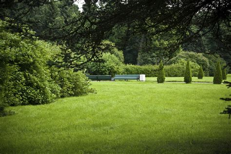 it s tips for your lawn and garden toll