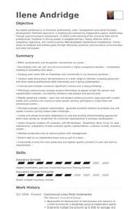 Insurance Underwriting Trainee Sle Resume by Souscripteur Exemple De Cv Base De Donn 233 Es Des Cv De Visualcv