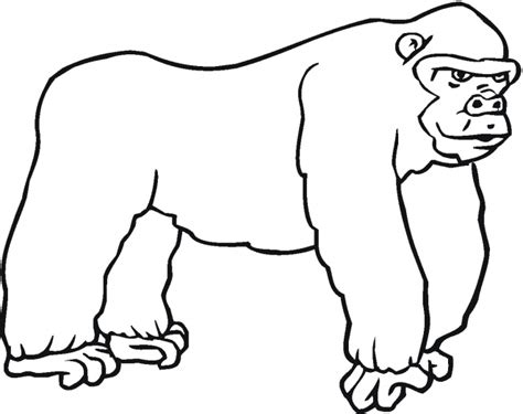 free coloring page of a gorilla gorilla coloring pages clipart panda free clipart images