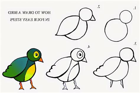 drawing birds learn to 1600583407 photos bird drawing easy step by step drawings art gallery