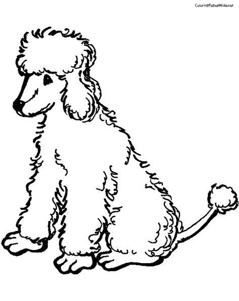 free poodle coloring pages az coloring pages