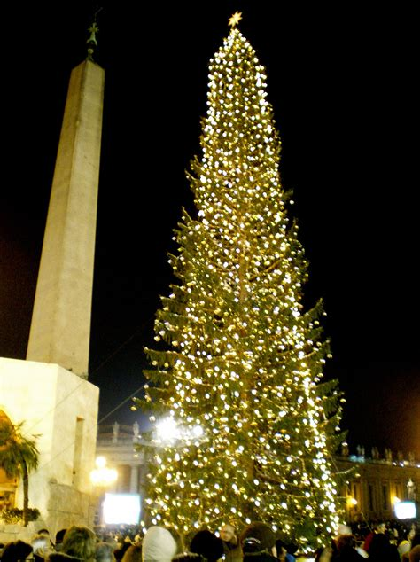 cristmas tree vatican tree