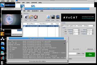 video format qvga avxcat ex ffmpegca gui ecsoft 2