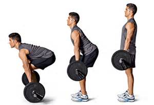What Is A Good Bench For My Weight Muscle Building Exercises Healthy Homeboy