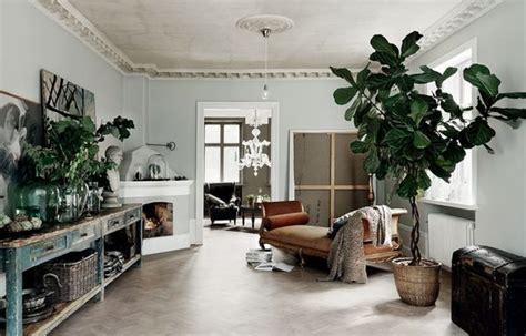 arredamento da interni piante oversize per valorizzare la casa di